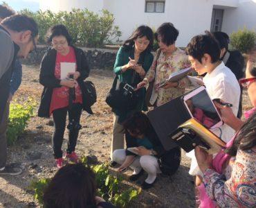 日本のワイン専門家ら、5月にギリシャを訪問
