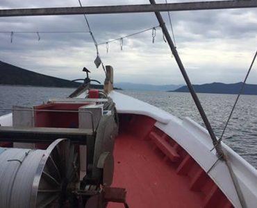 ギリシャの兄弟船が釣り上げたギリシャ産マグロ、日本へ!