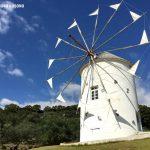 Σοντοσίμα, το ιαπωνικό «Νησί της Ελιάς»