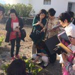 Επίσκεψη Ιαπώνων Δημοσιογράφων Οίνου στην Ελλάδα