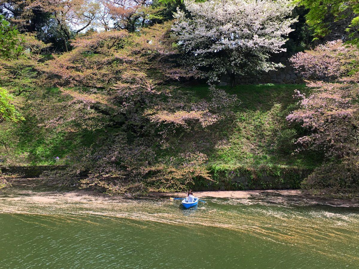 chidorigafuchi_008.jpg