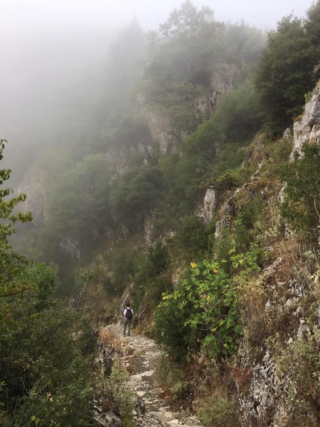 ヴィコス渓谷と霧