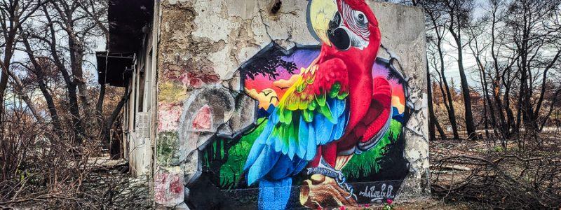 graffiti-north-athens-greecejapancom-06.jpg