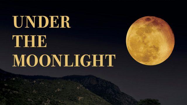 under-the-moon-light-2020-f.jpg