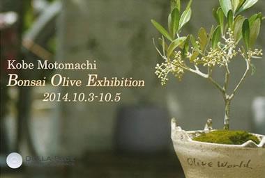 bonsai-olive-exhibition