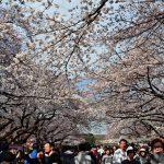 Αύξηση ρεκόρ για τον ιαπωνικό τουρισμό – Ξεπέρασαν τους 20.000.000 οι ξένοι τουρίστες
