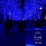 Τόκιο: Η μαγεία του μπλε στη Σιμπούγια