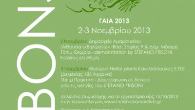 bonsai-seminar1.jpg
