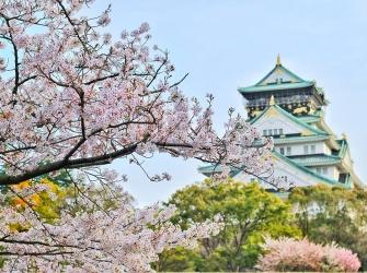 Χρειάζεται η Ελλάδα Ιαπωνικές Σπουδές;