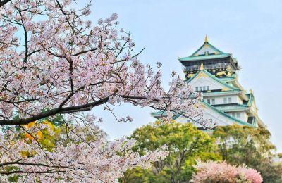 sakura-castle.jpg