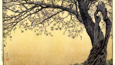 sakura-ukiyoe.jpg