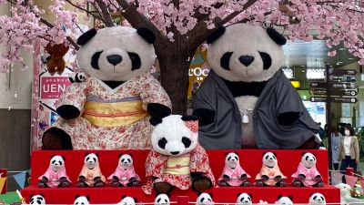 ueno-panda-greecejapancom-1.jpg